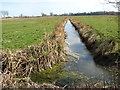 TM4591 : Drainage ditch in pastures south of the River Waveney, Worlingham by Evelyn Simak