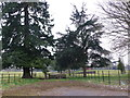ST9801 : Entrance to Kingston Lacy Park by Nigel Mykura