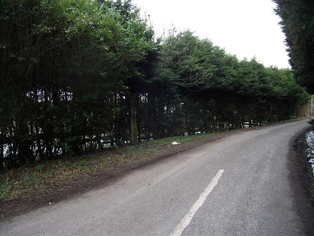Hidden Milepost