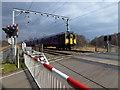 TL1988 : Level crossing in Holme Fen by Richard Humphrey