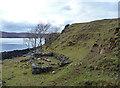 NG5437 : Ruin south of Oskaig by John Allan