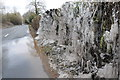 SO5342 : Hedge icicles by Philip Halling