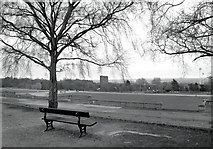 TQ3370 : Empty Seat, Crystal Palace Park by Des Blenkinsopp