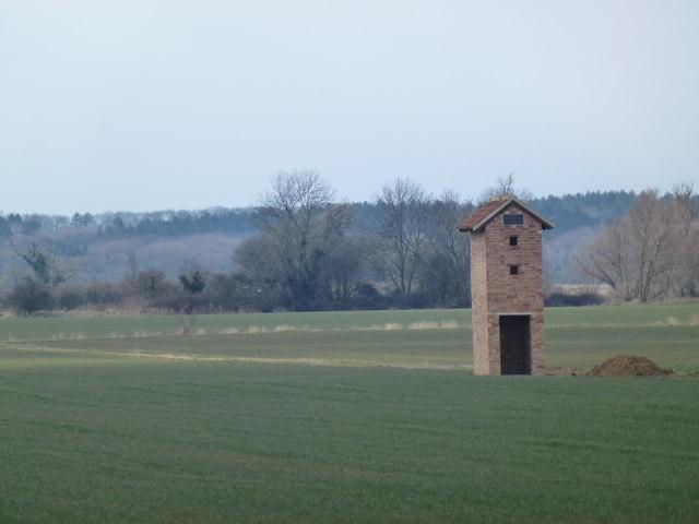 Barn owl tower