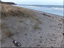 NU0052 : Sad day on the beach by Barbara Carr