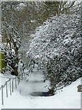 SO9096 : Footpath on Goldthorn Hill, Wolverhampton by Roger  Kidd