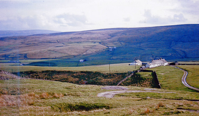 In Upper Teesdale below Grasshill Common