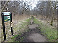 TL2188 : Footpath - Holme Fen National Nature Reserve by Richard Humphrey
