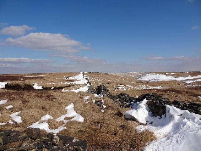 Bromiley Pastures