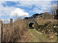 SO0611 : Footpath beneath the Brecon Mountain Railway by Gareth James