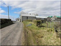 H5366 : Dervaghroy Road, Laragh by Kenneth  Allen
