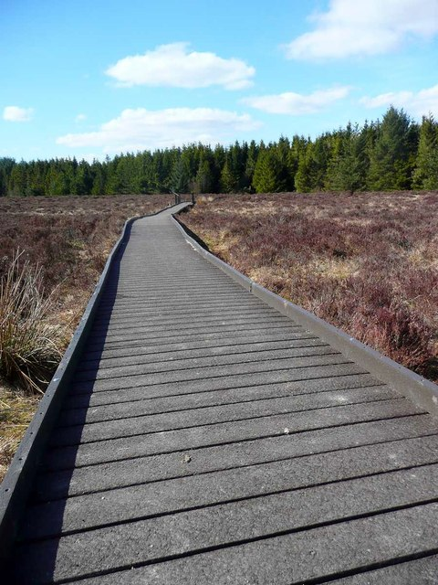 Boardwalk at the Langland Moss Nature Reserve