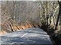 SU9790 : Steep hill near Dean Wood by Bikeboy