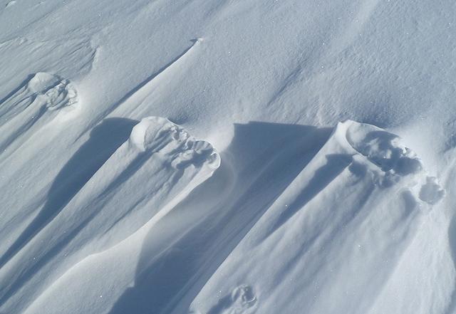 Raised footprints on Foulshiels Hill