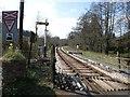 SX7963 : The South Devon Railway near Staverton village by David Gearing