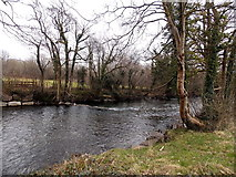 SS8983 : Ogmore River downstream from Riverside, Aberkenfig by Jaggery
