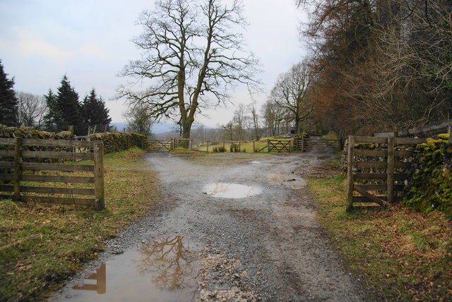 Dividing track above Sawrey