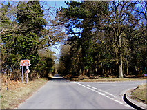 TM4669 : Westleton Road, Dunwich by Adrian Cable