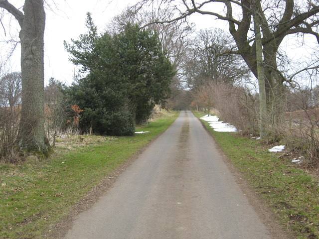 Grand avenue to Linkylea and Linplum houses