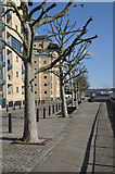 TQ3778 : Thames Path on the Isle of Dogs by Row17