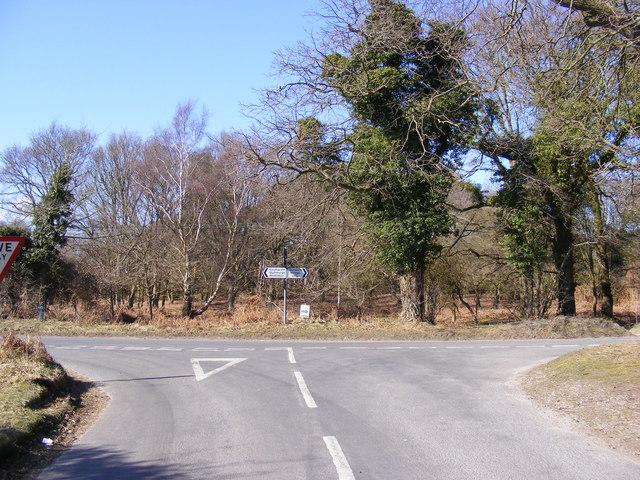 Minsmere Road, Dunwich