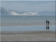 SY6879 : Weymouth: metal detecting on the beach by Chris Downer