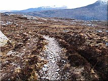 NC1819 : Track to Loch na Gainimh by wrobison