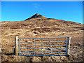 NG2241 : Gate on Bealach Bharcasaig by John Allan