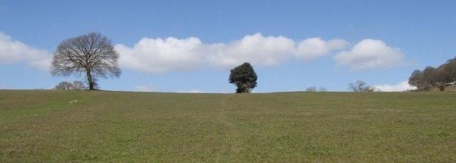 Field above Holehouse Farm