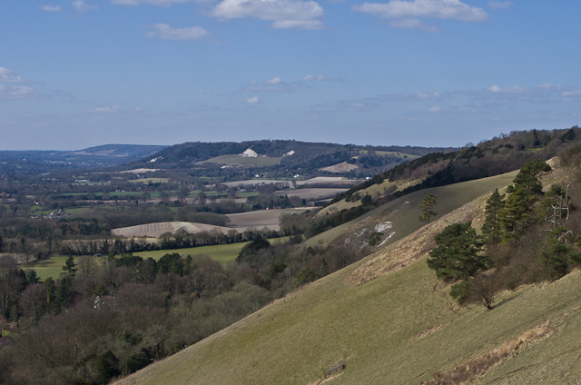 Colley Hill