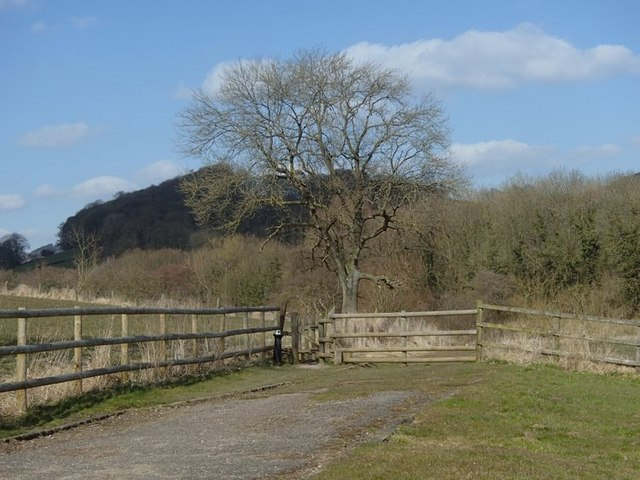 Path near Callow Park