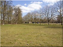 SP4416 : View towards Hensington Gate, Blenheim Park by David P Howard