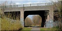 J3773 : The North Road bridge, Belfast by Albert Bridge