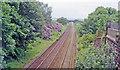 SJ5784 : Site of Daresbury station, 1994 by Ben Brooksbank