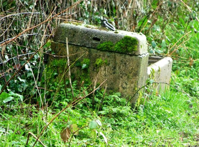 Stone water trough, West Hatch