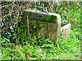 ST2820 : Stone water trough, West Hatch by nick macneill