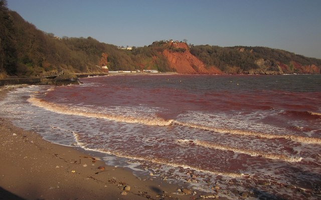 Red sea at Babbacombe