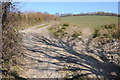 SN3317 : Footpath and track by Philip Halling