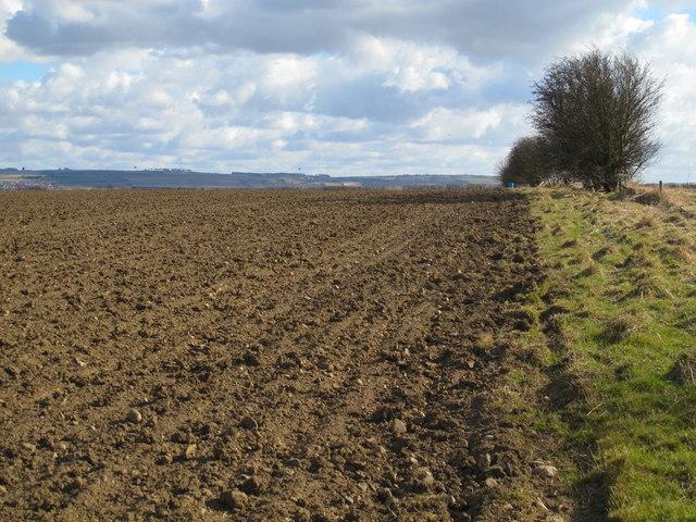 Farmland northwest of Nafferton Farm