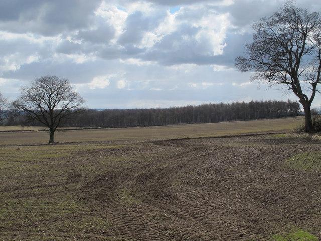 Farmland on Carrs Fell