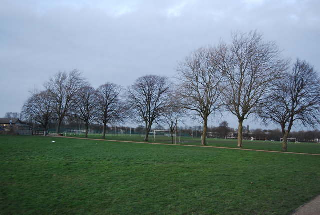 Line of trees, Great Heritage Park