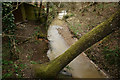 SY8487 : Stream at Bovington, Dorset by Peter Trimming