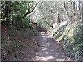 SK0942 : Closed Lane by Ian Calderwood