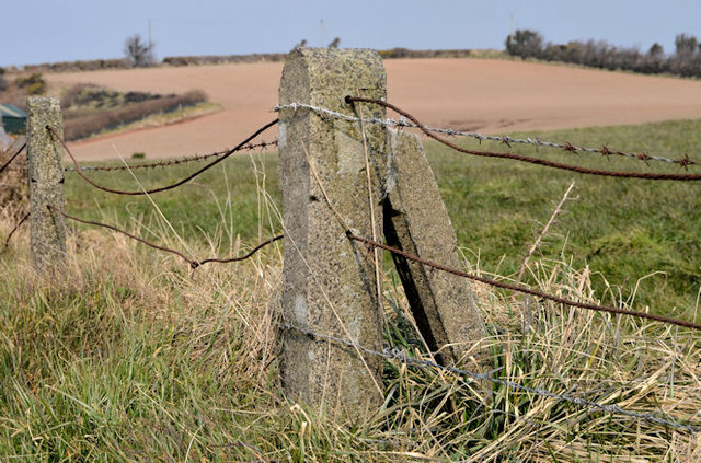 Concrete fence posts near Newtownards