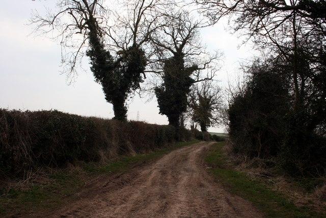 Cordall Lane