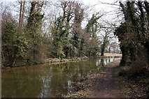 SK7289 : The Chesterfield Canal by Graham Hogg