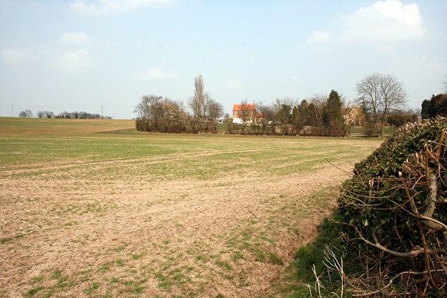 Fields near Wiseton