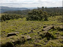 NS3779 : Ruins of Carman Cottage: the entrance by Lairich Rig