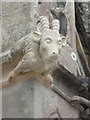 ST5071 : Gargoyle - Tyntesfield by Chris Allen