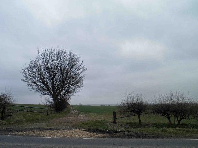 Gates and hedge to Lincolnshire farmland near Ulceby